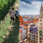 NESVAKIDAŠNJA PRIČA: Jedan brat otišao da radi u Nemačku, a drugi se vratio na selo! Evo ko je uspeo u životu