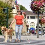AUSTRIJA – BEČ: Odlična ponuda! Potrebna žena za negu slepe osobe! Rad od 3 meseca ili stalno!
