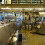 POSAO U INOSTRANSTVU – Posao u fabrici sira – Može bez eu pasoša – mogu muškarci, žene, parovi