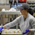 POSAO U NEMAČKOJ – Posao u proizvodnji hrane- muškarci i žene – posao nije fizički zahtevan
