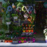 POSAO U AUSTRIJI – Potreban radnik za rad u cvećari- ŠTO PRE- PLATA 1200 EVRA!!!