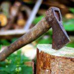 POSAO NEAMČKA – Posao šumarski radnik / drvoseča Nemačka – različite aktivnosti šumarskih radova, sečenje drveća