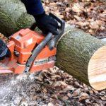 POSAO U NEMAČKOJ – Posao drvoseča Nemačka – poslovi na sečenju drveća vrtlarskim radovima obrezivanju ograde