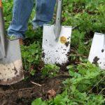 POSAO NEMAČKA – Posao pomoćni baštovan / vrtlar – zadaci na postavljanju ograda / sečenje / orezivanje / sejanje