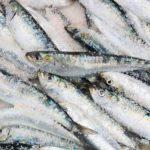 POSAO NEMAČKA – Potreban pomoćnik na farmi ribe i živine – klanje i hranjenje ribe i živine / briga o sistemima ribnjaka …